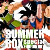 SUMMER BOX DRAGON BALL
