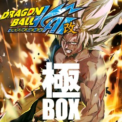 1st Anniversary KIWAMI BOX DRAGON BALL